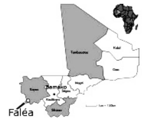 La commune de Faléa, frontalière du Sénégal et de la Guinée, est située au sudouest du Mali dans la région de Kayes.